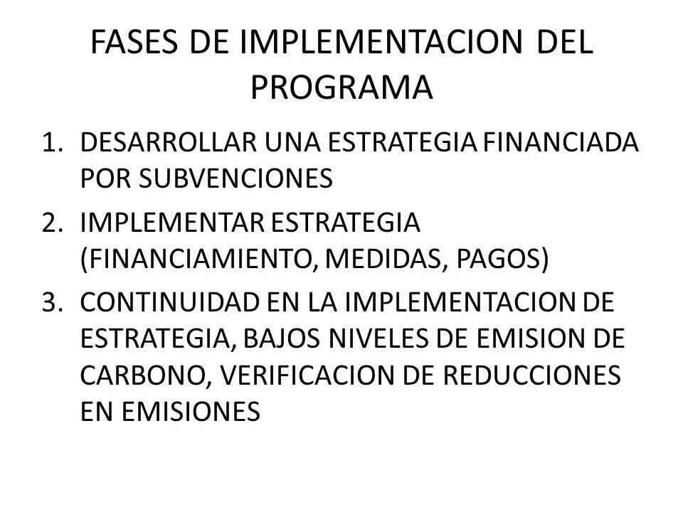 FASES DE IMPLEMENTACION DEL PROGRAMA 1.DESARROLLAR UNA ESTRATEGIA FINANCIADA POR SUBVENCIONES 2.IMPLEMENTAR ESTRATEGIA (FINANCIAMIENTO, MEDIDAS, PAGOS