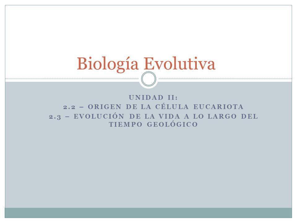 UNIDAD II: 2.2 – ORIGEN DE LA CÉLULA EUCARIOTA 2.3 – EVOLUCIÓN DE LA VIDA A LO LARGO DEL TIEMPO GEOLÓGICO Biología Evolutiva