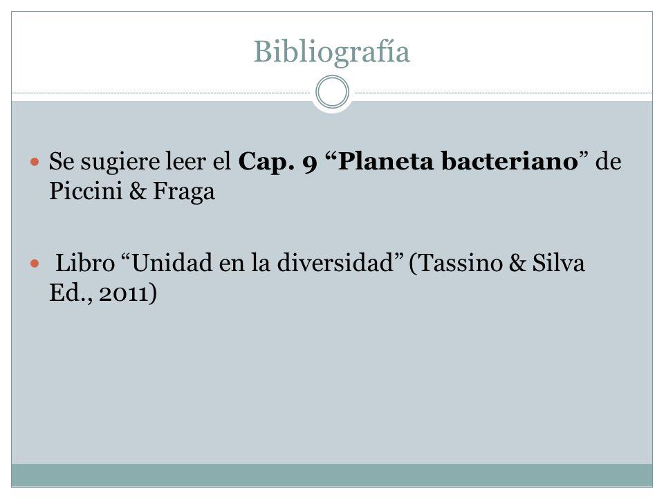 Bibliografía Se sugiere leer el Cap. 9 Planeta bacteriano de Piccini & Fraga Libro Unidad en la diversidad (Tassino & Silva Ed., 2011)