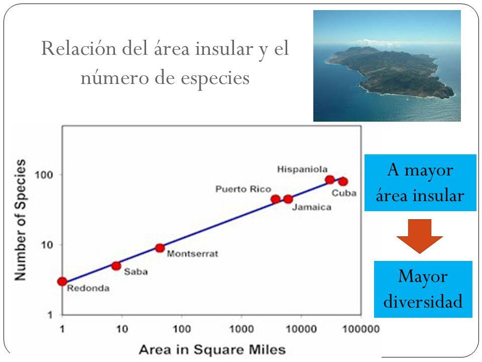Relación del área insular y el número de especies A mayor área insular Mayor diversidad