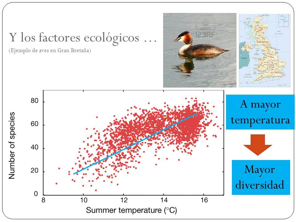 Y los factores ecológicos … (Ejemplo de aves en Gran Bretaña) Mayor diversidad A mayor temperatura