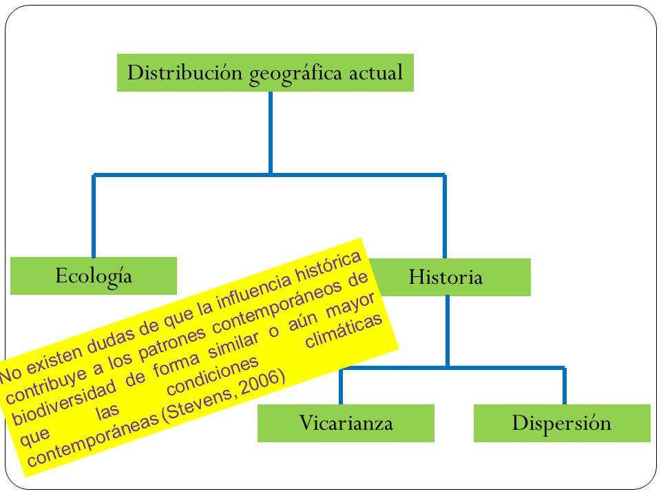 Distribución geográfica actual Historia Ecología VicarianzaDispersión No existen dudas de que la influencia histórica contribuye a los patrones contem