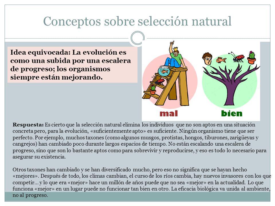 Conceptos sobre selección natural Respuesta: Es cierto que la selección natural elimina los individuos que no son aptos en una situación concreta pero, para la evolución, «suficientemente apto» es suficiente.