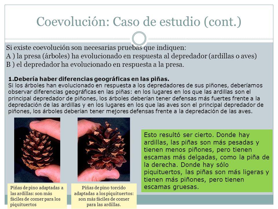 Si existe coevolución son necesarias pruebas que indiquen: A ) la presa (árboles) ha evolucionado en respuesta al depredador (ardillas o aves) B ) el