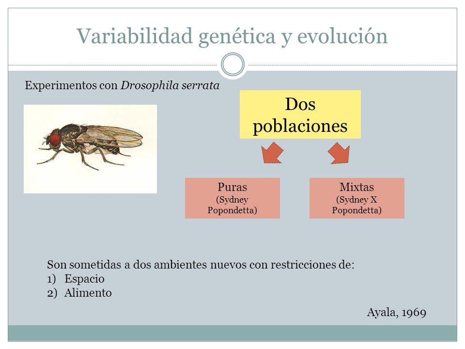 Variabilidad genética y evolución Dos poblaciones Mixtas (Sydney X Popondetta) Puras (Sydney Popondetta) Son sometidas a dos ambientes nuevos con rest