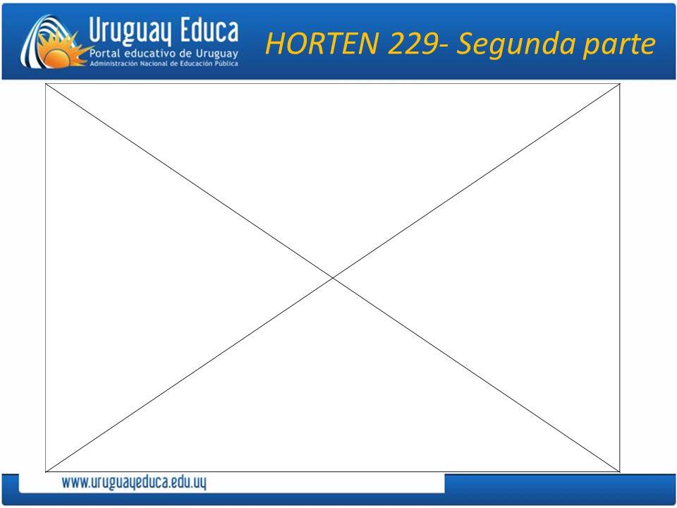 HORTEN 229- Segunda parte