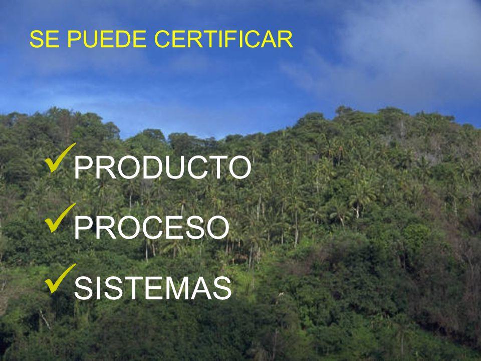 NORMA TÉCNICA Documento, establecido por consenso y aprobado por un organismo reconocido que proporciona, para un uso común y repetido, reglas, direct