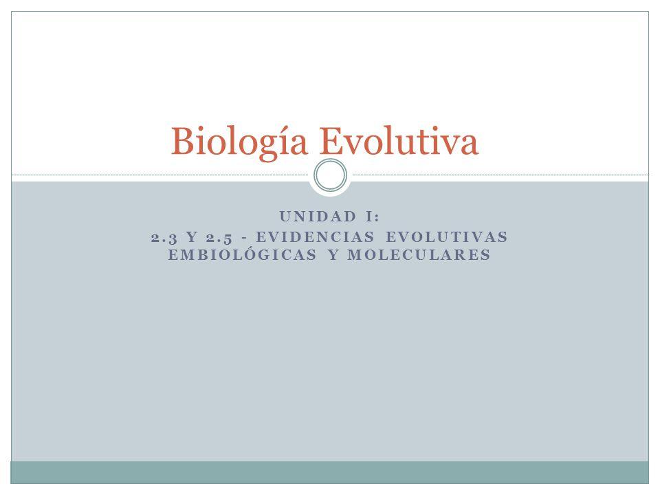 UNIDAD I: 2.3 Y 2.5 - EVIDENCIAS EVOLUTIVAS EMBIOLÓGICAS Y MOLECULARES Biología Evolutiva