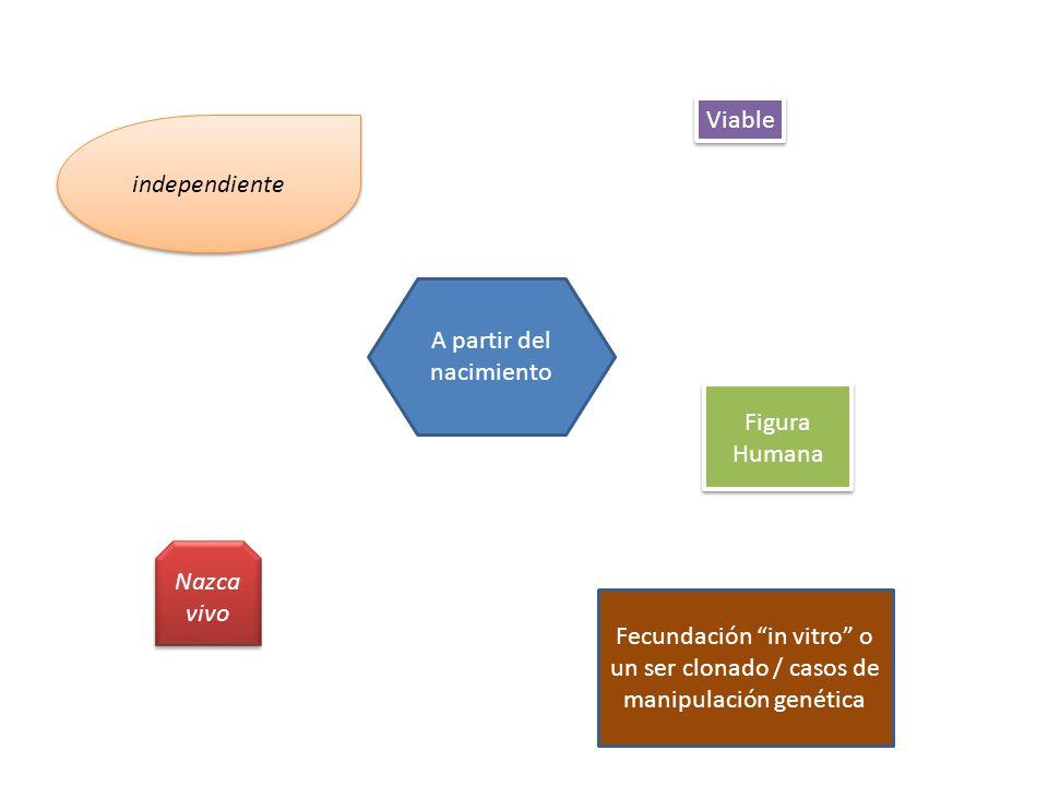 A partir del nacimiento Viable Figura Humana independiente Nazca vivo Fecundación in vitro o un ser clonado / casos de manipulación genética