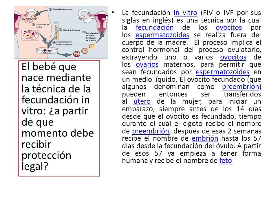 La fecundación in vitro (FIV o IVF por sus siglas en inglés) es una técnica por la cual la fecundación de los ovocitos por los espermatozoides se real