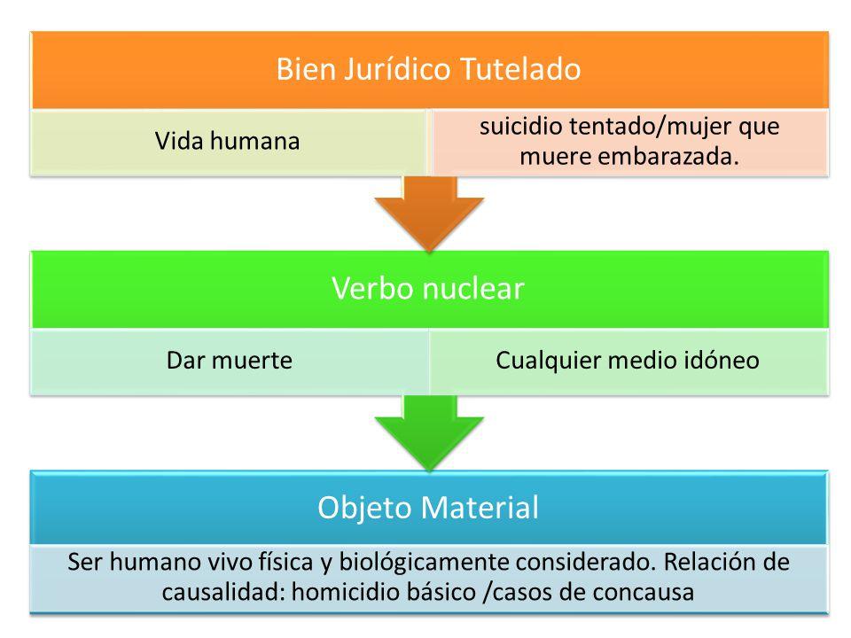 Objeto Material Ser humano vivo física y biológicamente considerado. Relación de causalidad: homicidio básico /casos de concausa Verbo nuclear Dar mue