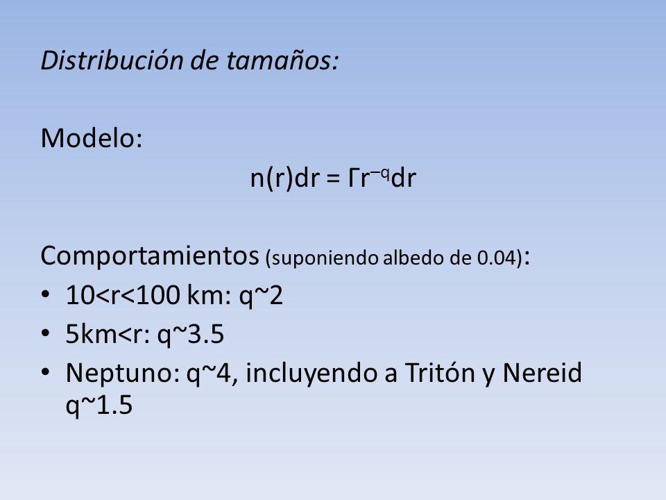 Distribución de tamaños: Modelo: n(r)dr = Γr –q dr Comportamientos (suponiendo albedo de 0.04) : 10<r<100 km: q~2 5km<r: q~3.5 Neptuno: q~4, incluyend
