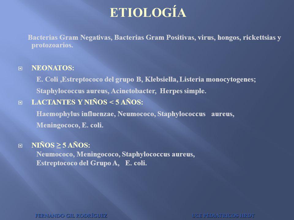 Bacterias Gram Negativas, Bacterias Gram Positivas, virus, hongos, rickettsias y protozoarios. NEONATOS: E. Coli,Estreptococo del grupo B, Klebsiella,