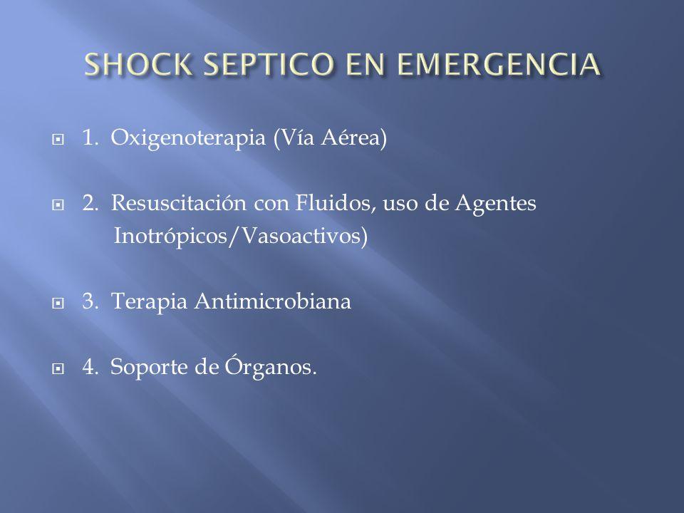 1. Oxigenoterapia (Vía Aérea) 2. Resuscitación con Fluidos, uso de Agentes Inotrópicos/Vasoactivos) 3. Terapia Antimicrobiana 4. Soporte de Órganos.