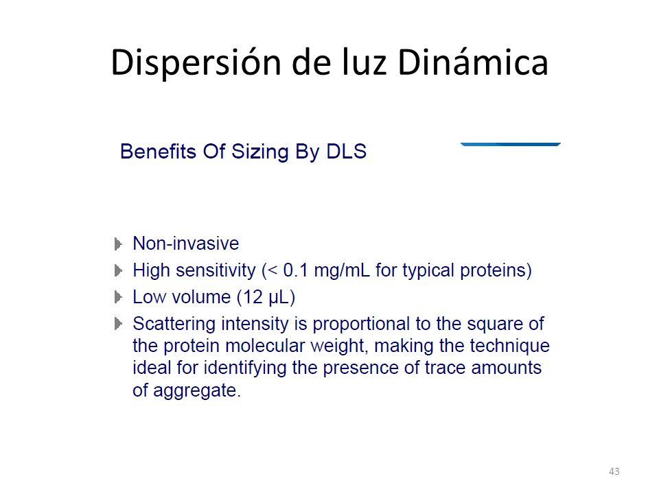 Dispersión de luz Dinámica 43