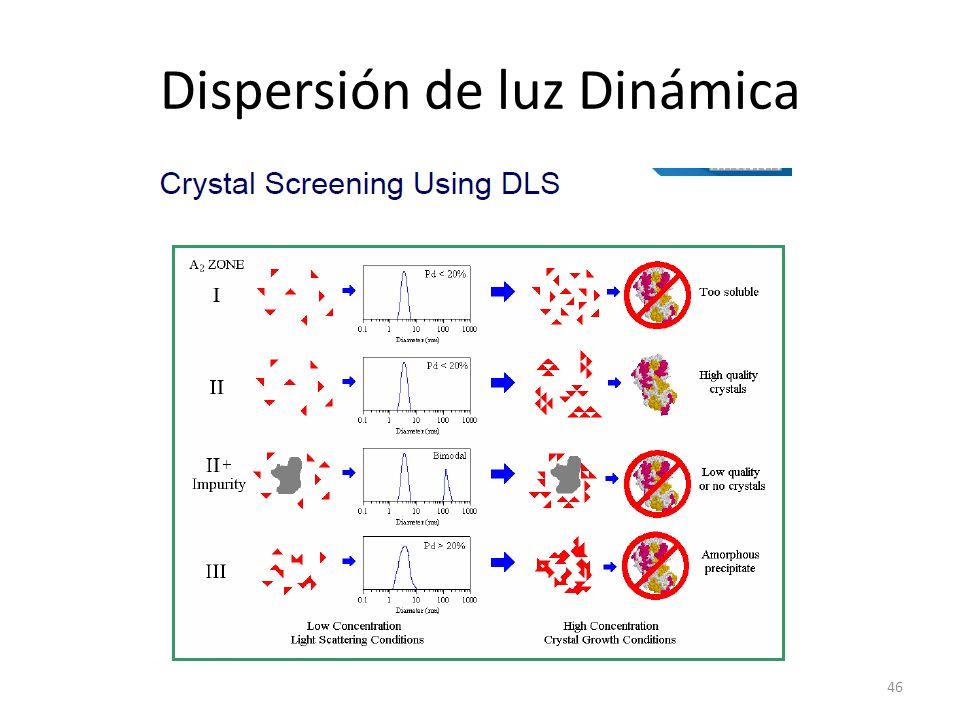 Dispersión de luz Dinámica 46
