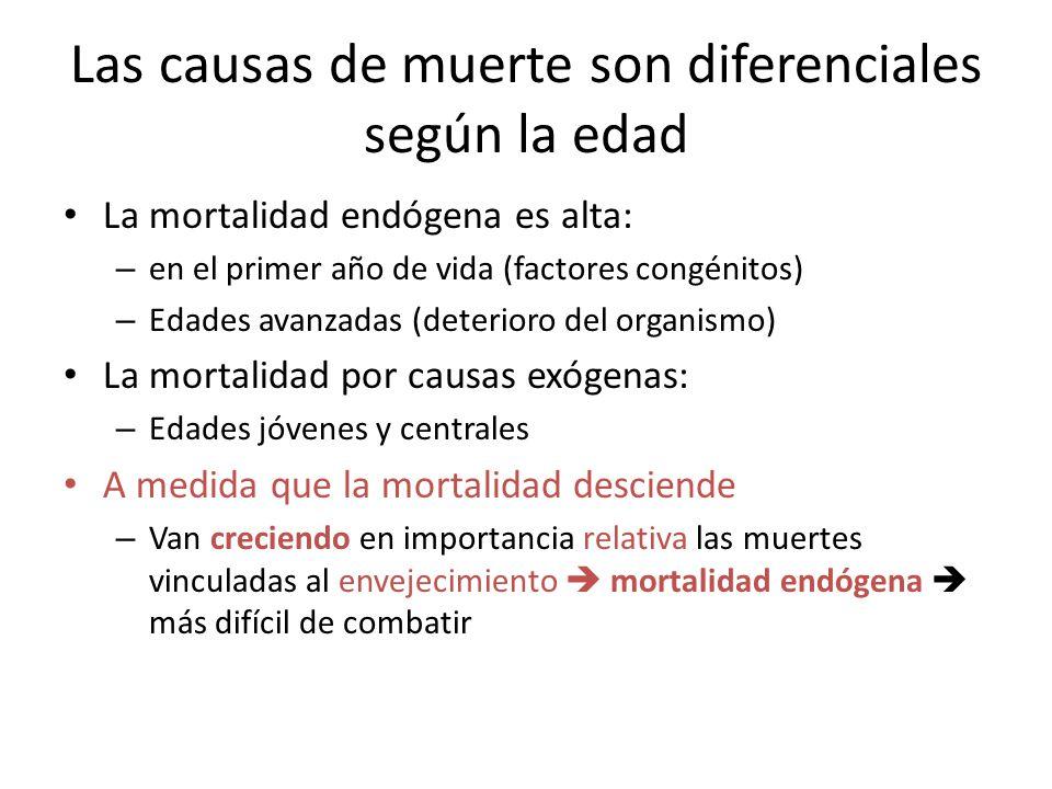 Las causas de muerte son diferenciales según la edad La mortalidad endógena es alta: – en el primer año de vida (factores congénitos) – Edades avanzad