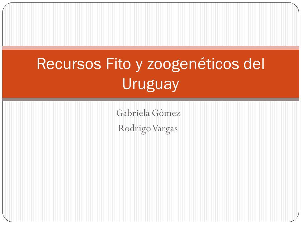 Gabriela Gómez Rodrigo Vargas Recursos Fito y zoogenéticos del Uruguay