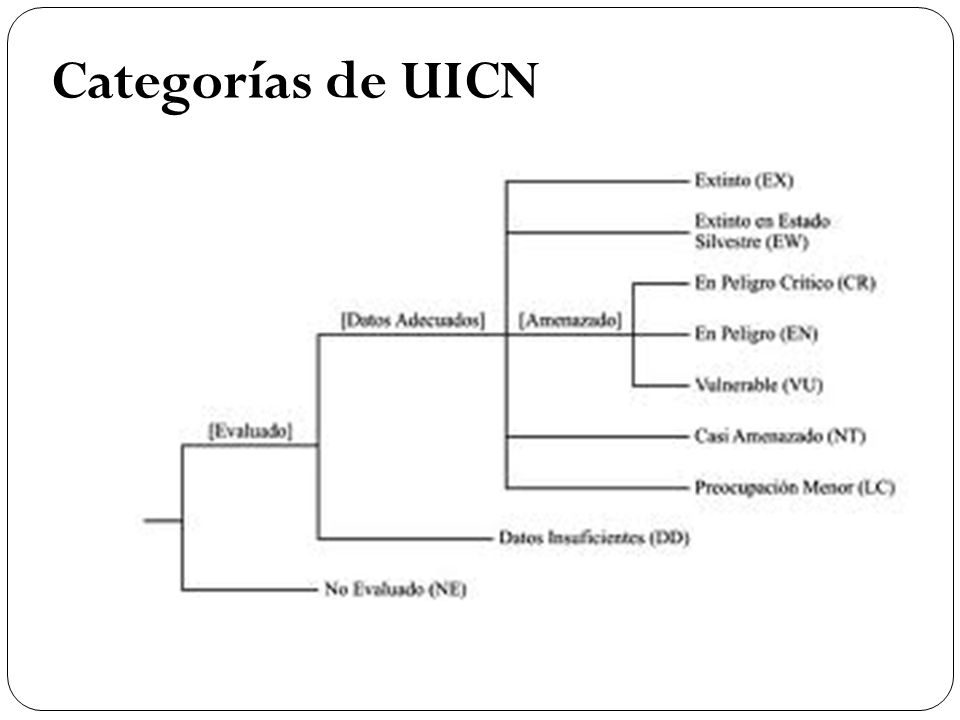 Categorías de UICN