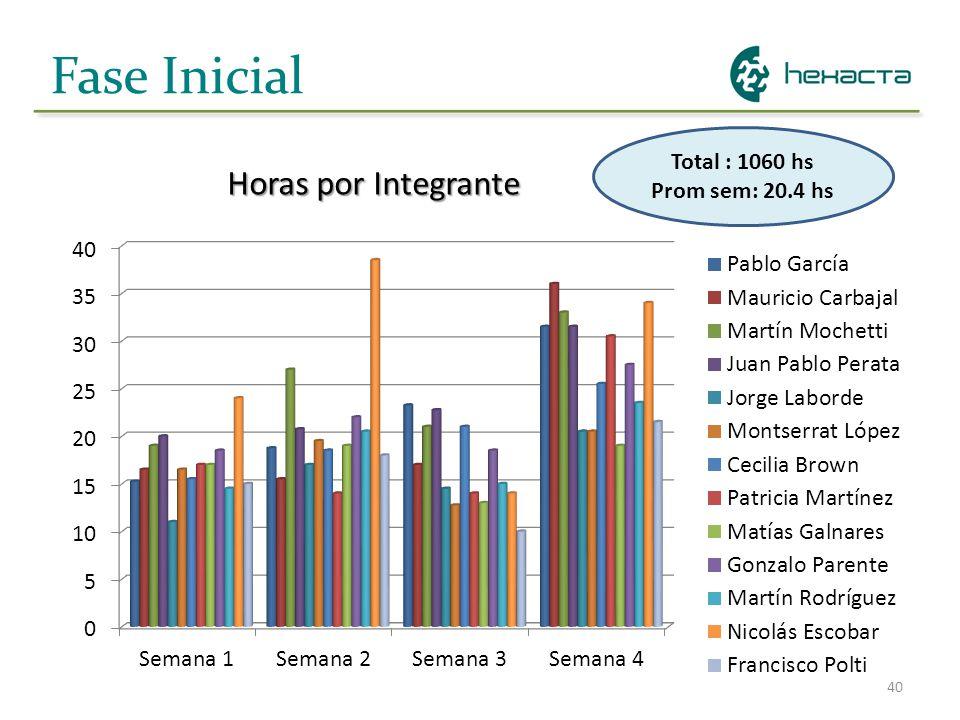 40 Fase Inicial Horas por Integrante Total : 1060 hs Prom sem: 20.4 hs