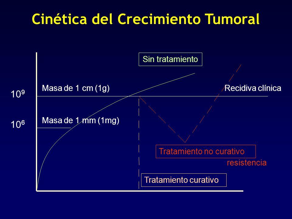 Cinética del Crecimiento Tumoral 10 9 10 6 Masa de 1 cm (1g) Masa de 1 mm (1mg) Sin tratamiento Tratamiento curativo Tratamiento no curativo Recidiva