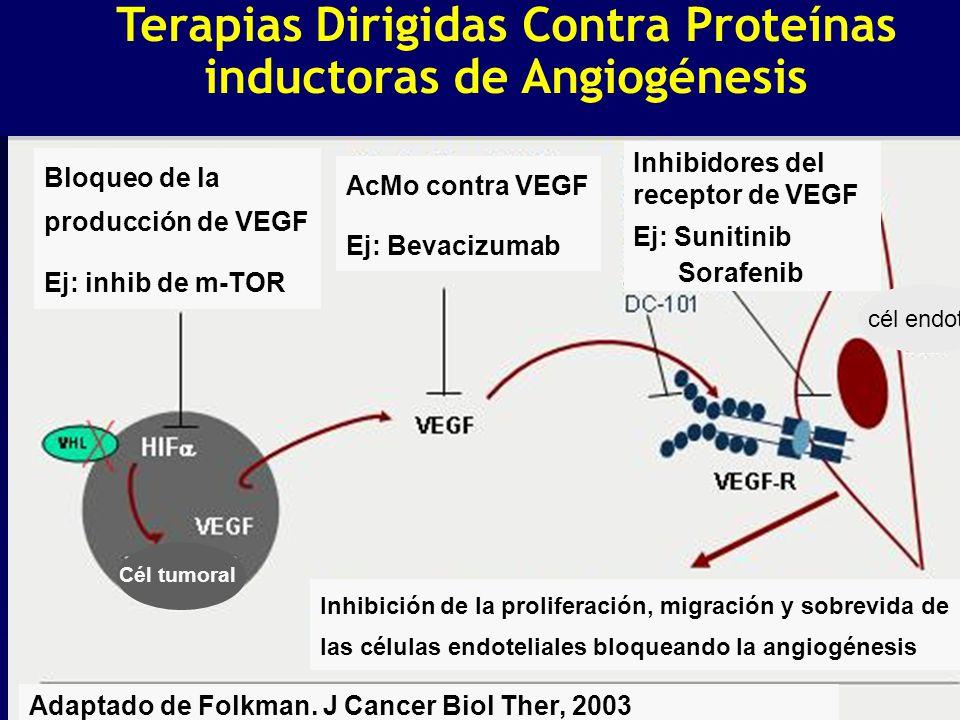 Terapias Dirigidas Contra Proteínas inductoras de Angiogénesis Adaptado de Folkman. J Cancer Biol Ther, 2003 Bloqueo de la producción de VEGF Ej: inhi