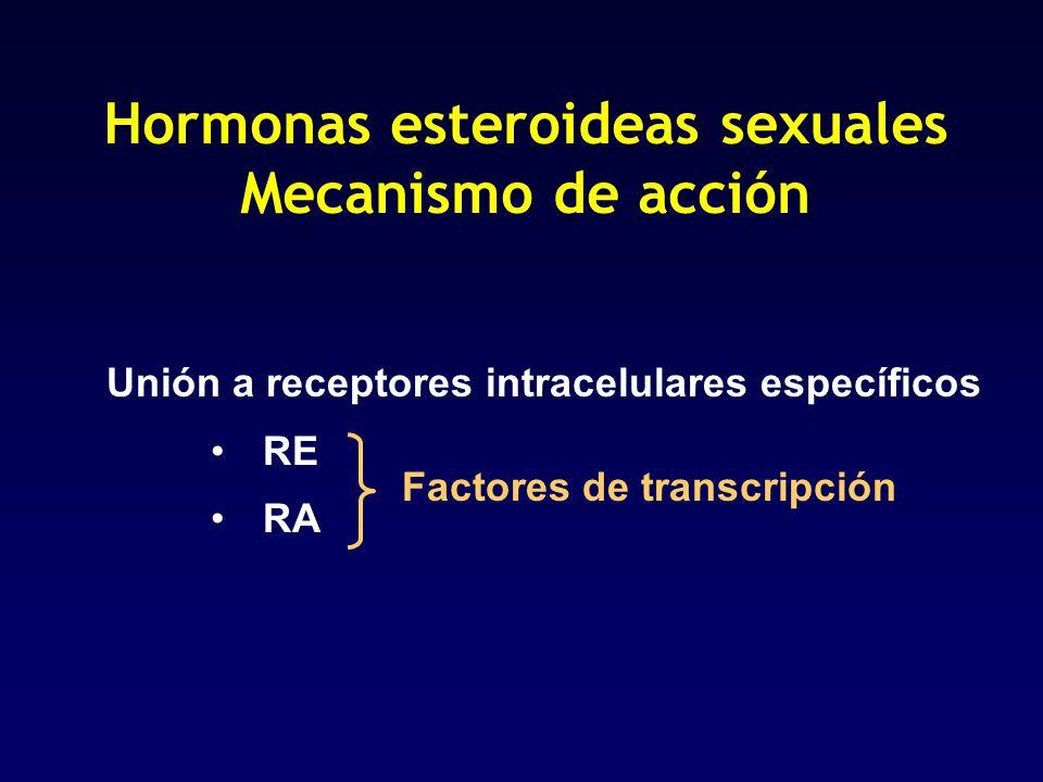 Agentes antimicrotúbulo Alcaloides de la vinca - VINCRISTINA Taxanos - PACLITAXEL - DOCETAXEL
