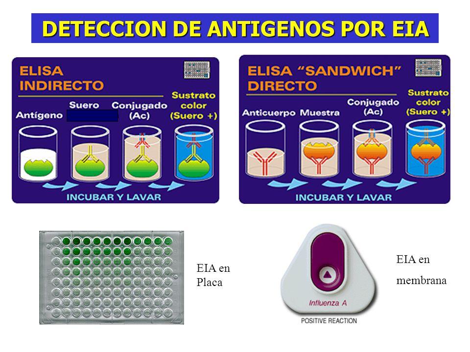 DETECCION DE ANTIGENOS POR EIA EIA en membrana EIA en Placa