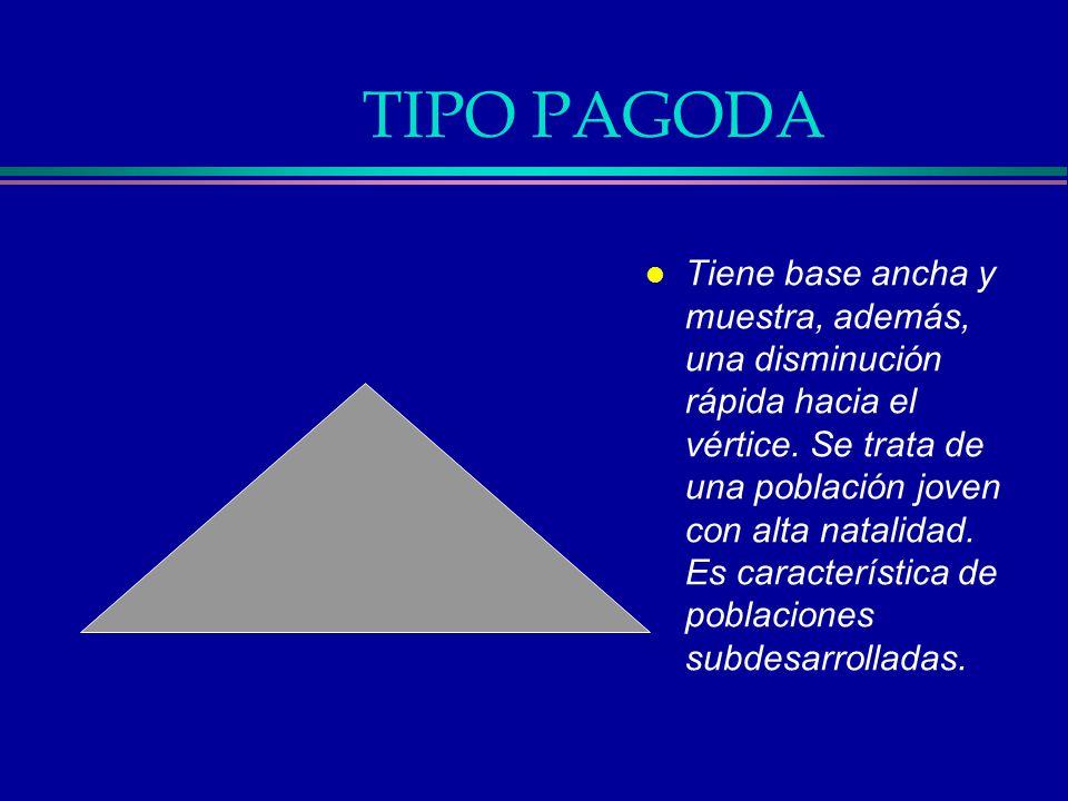 TIPO PAGODA l Tiene base ancha y muestra, además, una disminución rápida hacia el vértice. Se trata de una población joven con alta natalidad. Es cara