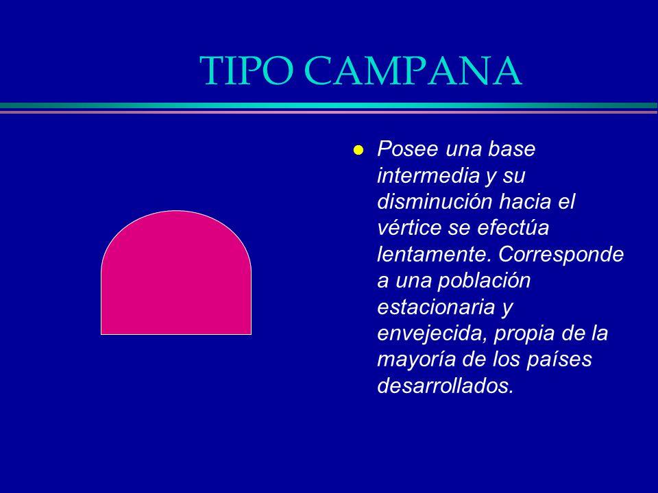 TIPO CAMPANA l Posee una base intermedia y su disminución hacia el vértice se efectúa lentamente. Corresponde a una población estacionaria y envejecid