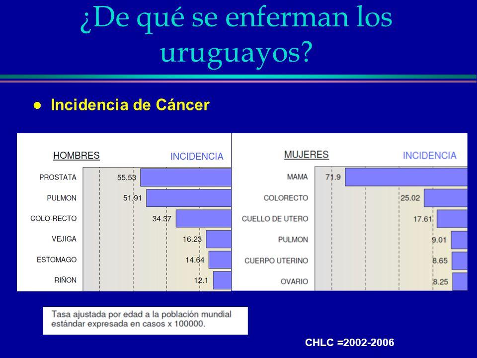 ¿De qué se enferman los uruguayos? l Incidencia de Cáncer CHLC =2002-2006