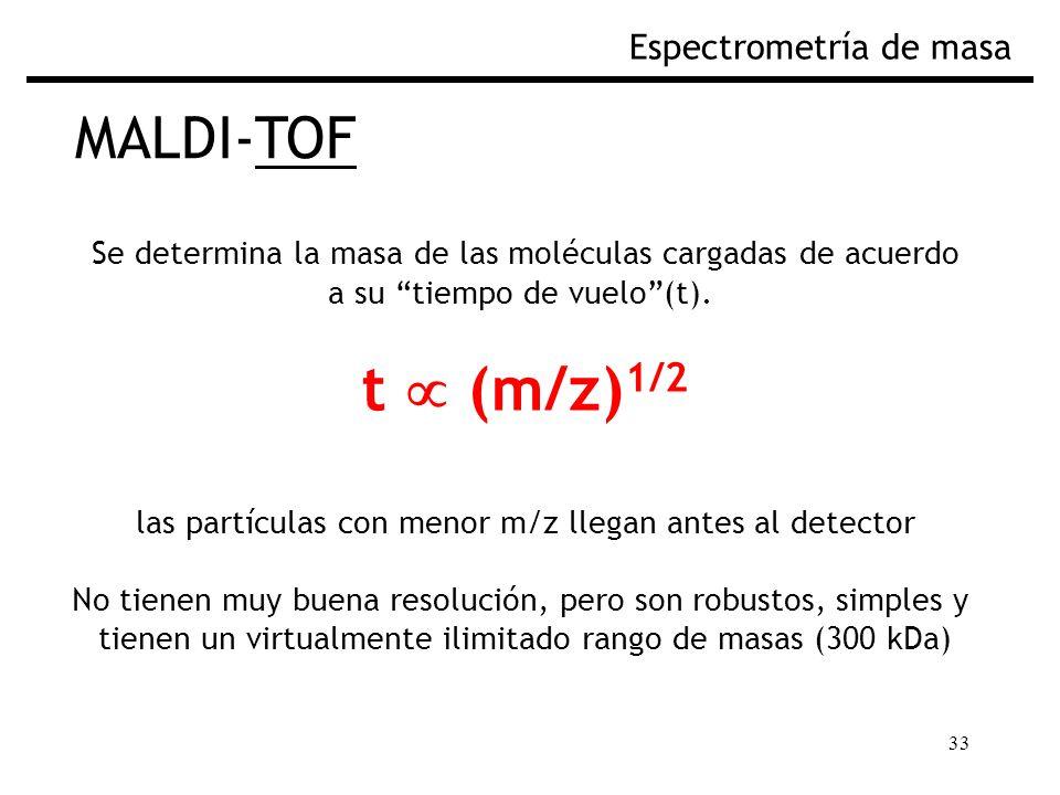 33 MALDI-TOF Espectrometría de masa Se determina la masa de las moléculas cargadas de acuerdo a su tiempo de vuelo(t). t (m/z) 1/2 las partículas con
