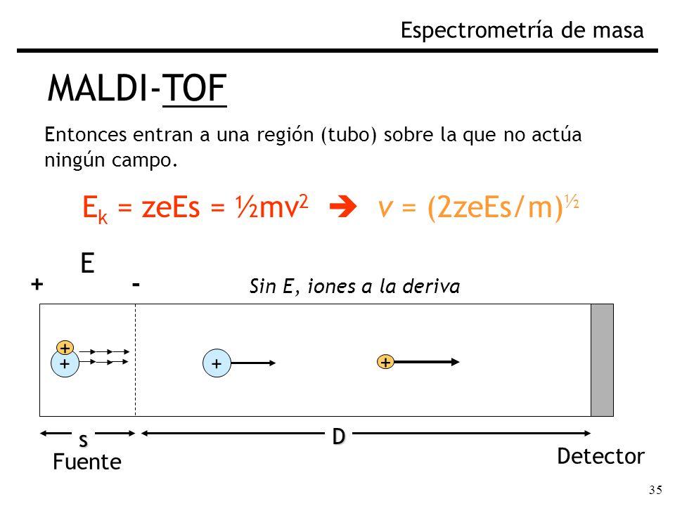 35 MALDI-TOF Espectrometría de masa Entonces entran a una región (tubo) sobre la que no actúa ningún campo. E k = zeEs = ½mv 2 v = (2zeEs/m) ½ Fuente