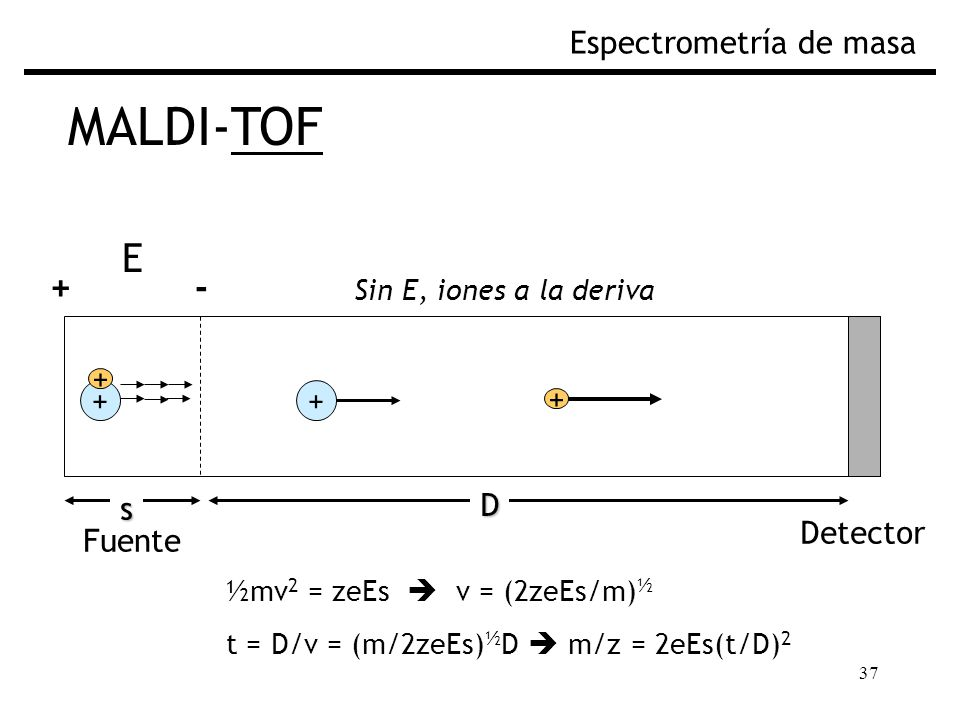 37 MALDI-TOF Espectrometría de masa ½mv 2 = zeEs v = (2zeEs/m) ½ t = D/v = (m/2zeEs) ½ D m/z = 2eEs(t/D) 2 Fuente Sin E, iones a la deriva Detector Fi