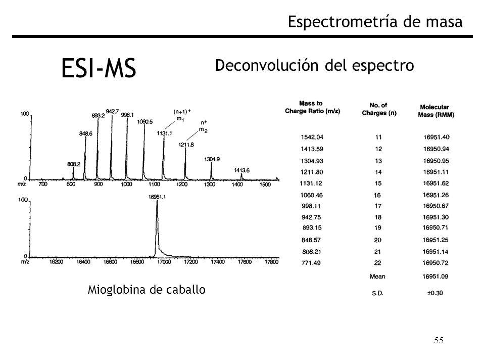 55 ESI-MS Espectrometría de masa Deconvolución del espectro Mioglobina de caballo