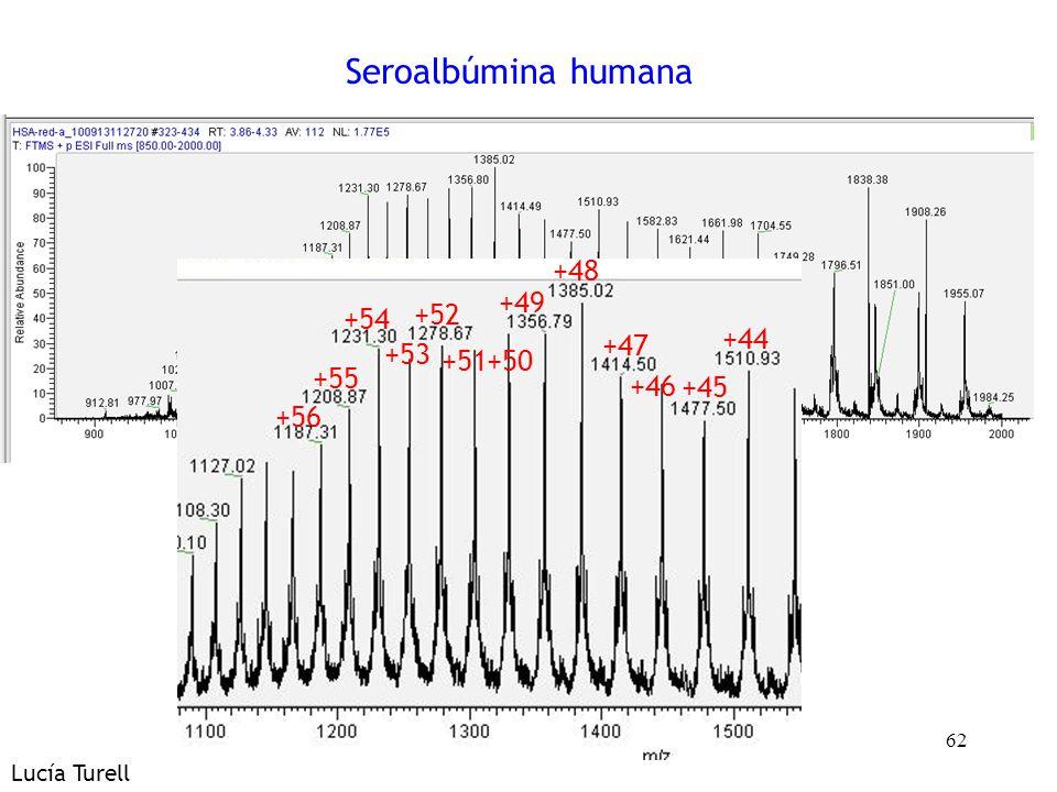 62 Seroalbúmina humana +45 +44 +47 +46 +49 +48 +51+50 +52 +54 +53 +56 +55 Lucía Turell