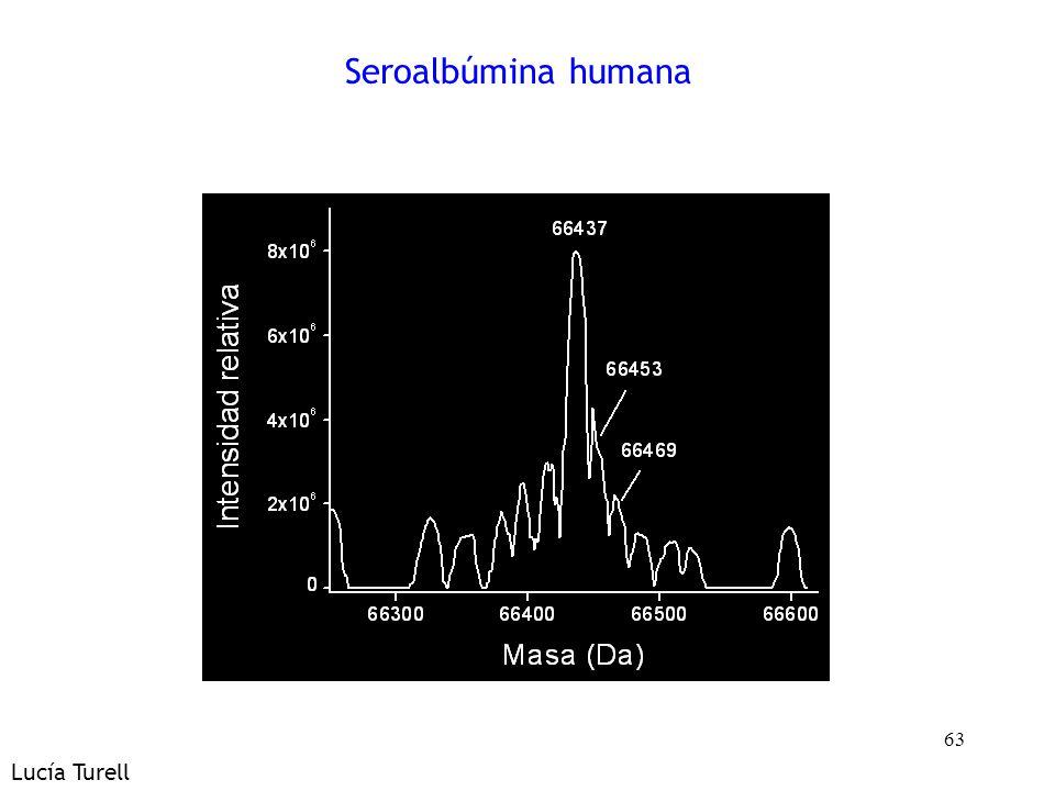 63 Seroalbúmina humana Lucía Turell