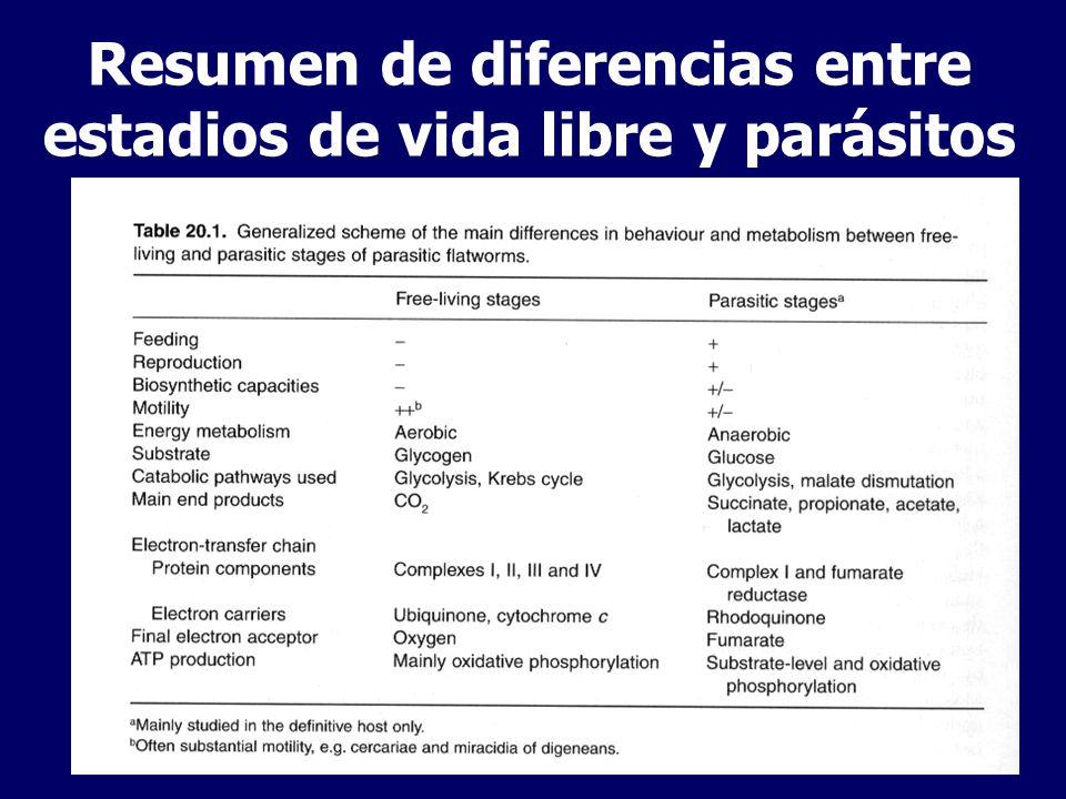 Resumen de diferencias entre estadios de vida libre y parásitos