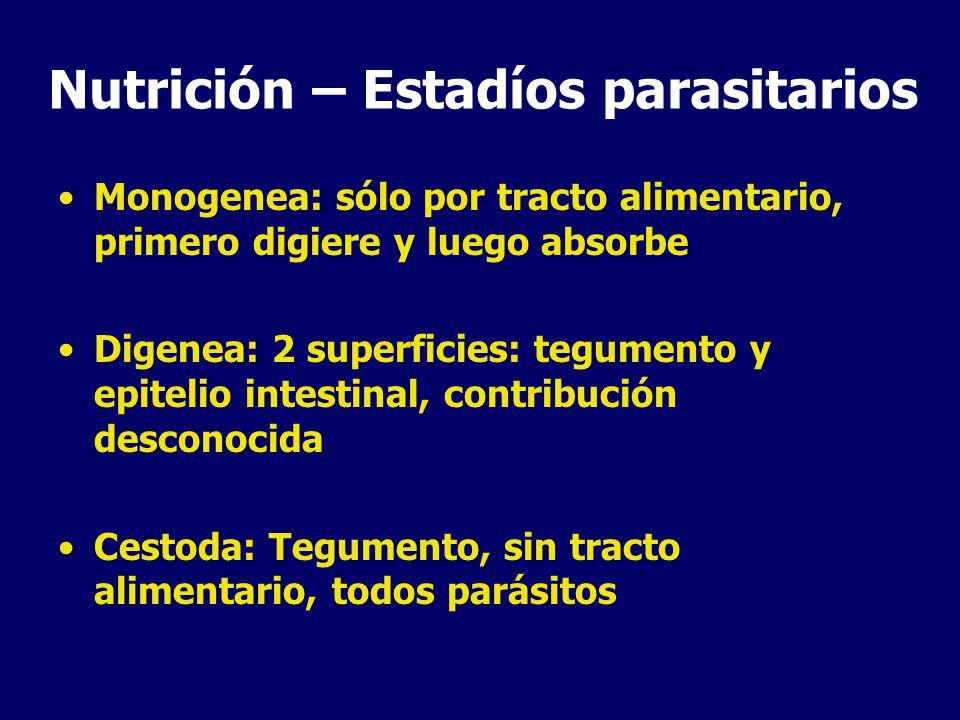 Nutrición – Estadíos parasitarios Monogenea: sólo por tracto alimentario, primero digiere y luego absorbe Digenea: 2 superficies: tegumento y epitelio intestinal, contribución desconocida Cestoda: Tegumento, sin tracto alimentario, todos parásitos