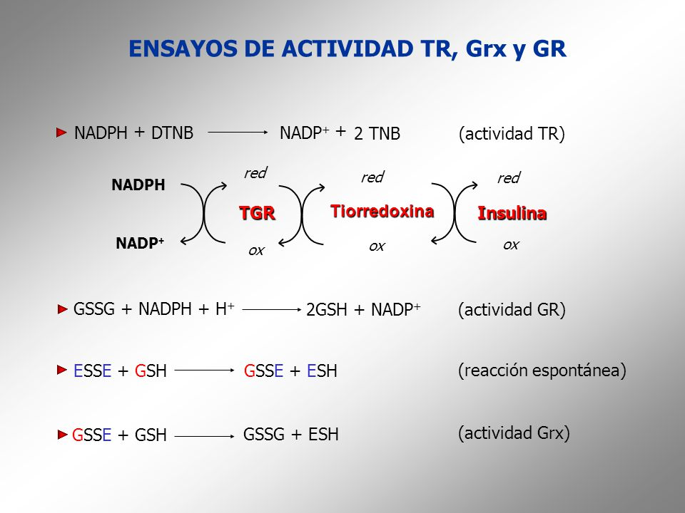ENSAYOS DE ACTIVIDAD TR, Grx y GR ESSE + GSHGSSE + ESH (reacción espontánea) GSSE + GSH GSSG + ESH (actividad Grx) NADPH + + NADP + DTNB 2 TNB(activid