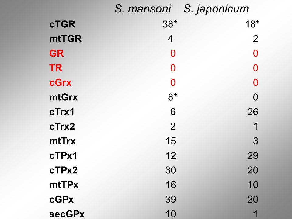 S. mansoniS. japonicum cTGR 38* 18* mtTGR 4 2 GR 0 0 TR 0 0 cGrx 0 0 mtGrx 8* 0 cTrx1 6 26 cTrx2 2 1 mtTrx 15 3 cTPx1 12 29 cTPx2 30 20 mtTPx 16 10 cG
