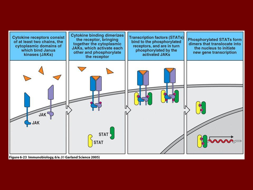 Figure 6-23