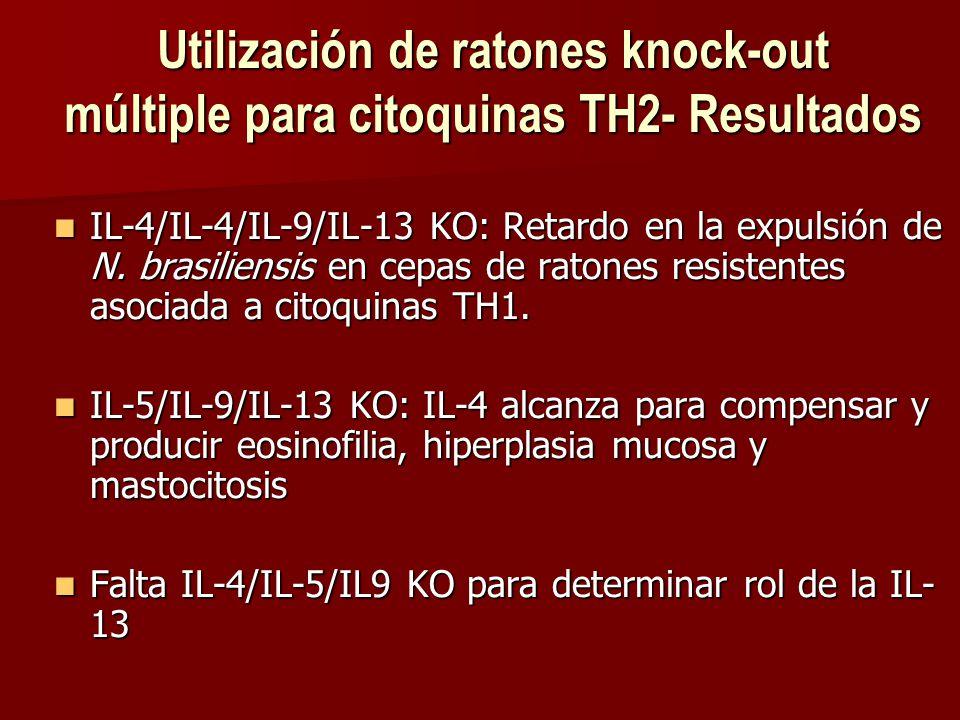 Utilización de ratones knock-out múltiple para citoquinas TH2- Resultados IL-4/IL-4/IL-9/IL-13 KO: Retardo en la expulsión de N.