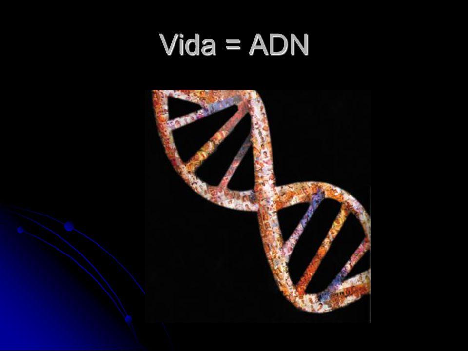 Vida = ADN