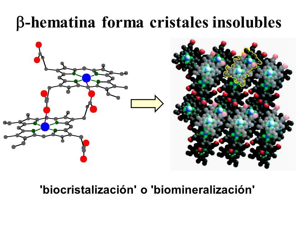 -hematina forma cristales insolubles 'biocristalización' o 'biomineralización'