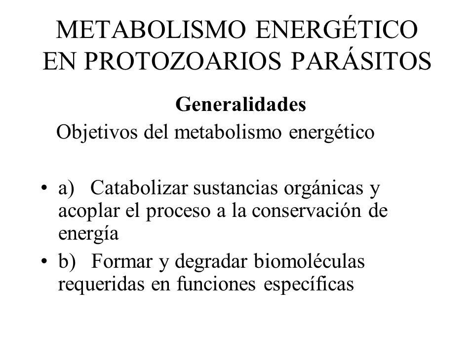 METABOLISMO ENERGÉTICO EN PROTOZOARIOS PARÁSITOS Generalidades Objetivos del metabolismo energético a) Catabolizar sustancias orgánicas y acoplar el proceso a la conservación de energía b) Formar y degradar biomoléculas requeridas en funciones específicas