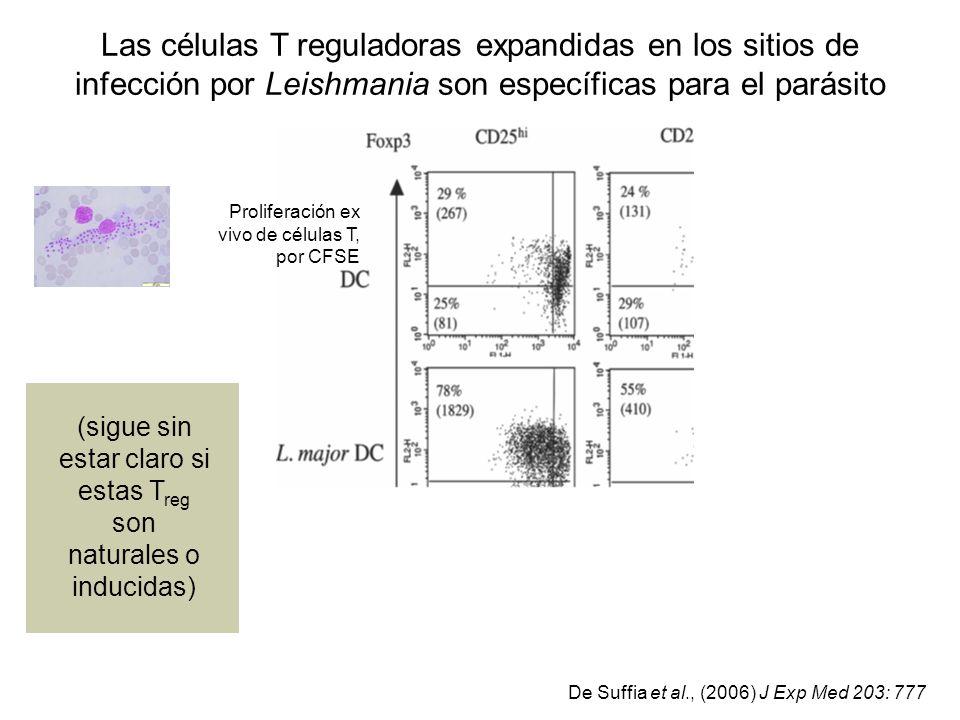 Las células T reguladoras expandidas en los sitios de infección por Leishmania son específicas para el parásito Proliferación ex vivo de células T, po