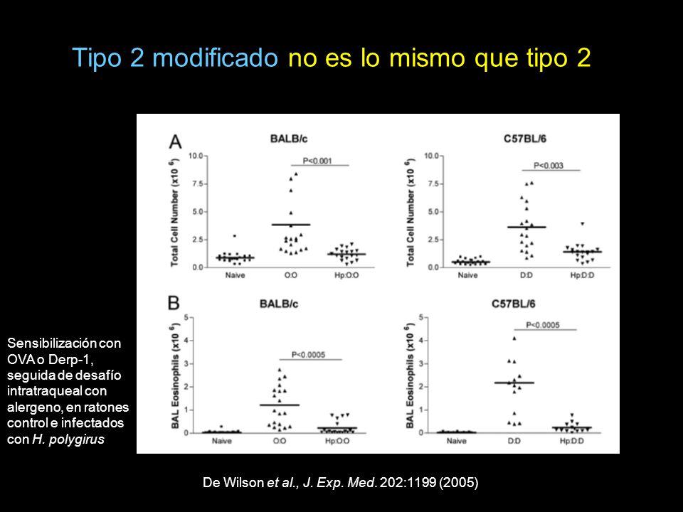 De Wilson et al., J. Exp. Med. 202:1199 (2005) Sensibilización con OVA o Derp-1, seguida de desafío intratraqueal con alergeno, en ratones control e i