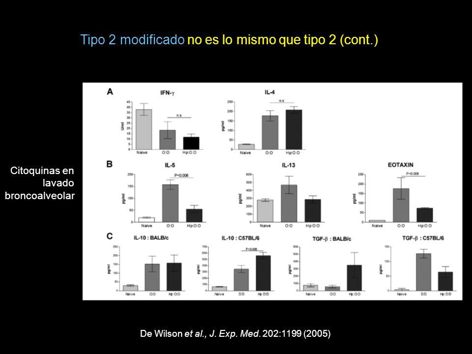 De Wilson et al., J. Exp. Med. 202:1199 (2005) Citoquinas en lavado broncoalveolar Tipo 2 modificado no es lo mismo que tipo 2 (cont.)