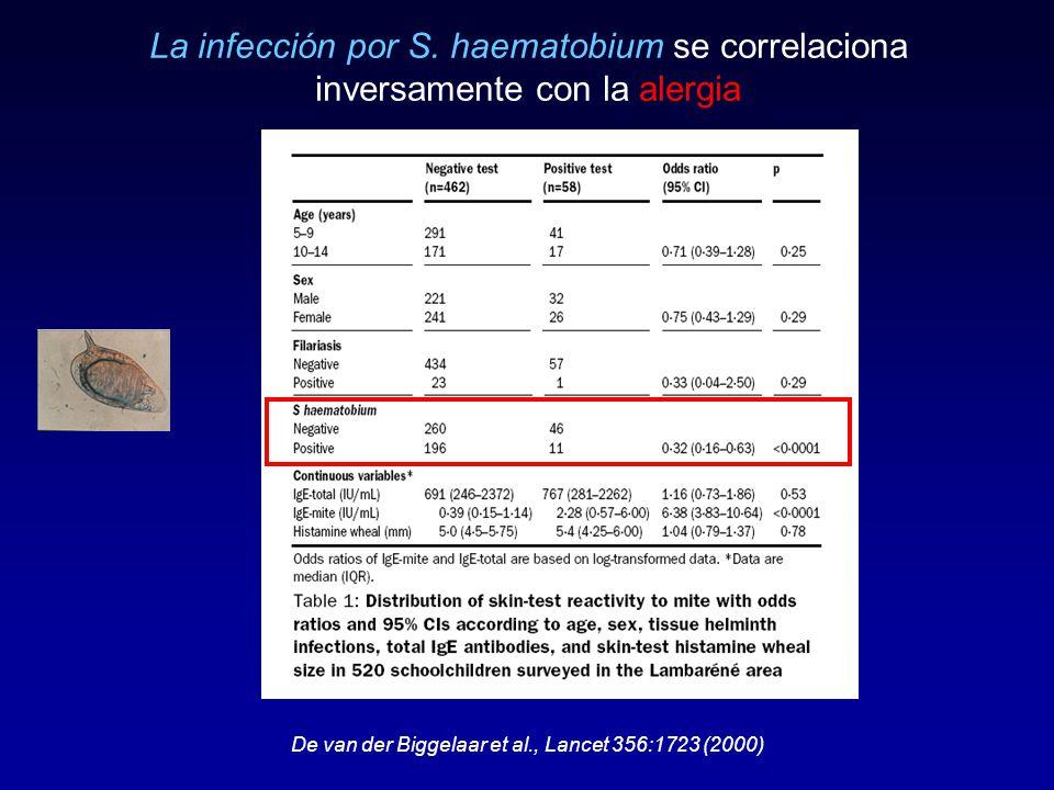 La infección por S. haematobium se correlaciona inversamente con la alergia De van der Biggelaar et al., Lancet 356:1723 (2000)